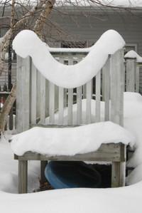 Snow_droop
